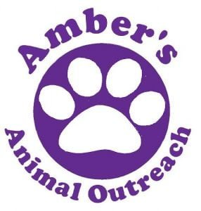 Amber's Animal Outreach