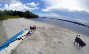 Bingham Island Paddle WPB