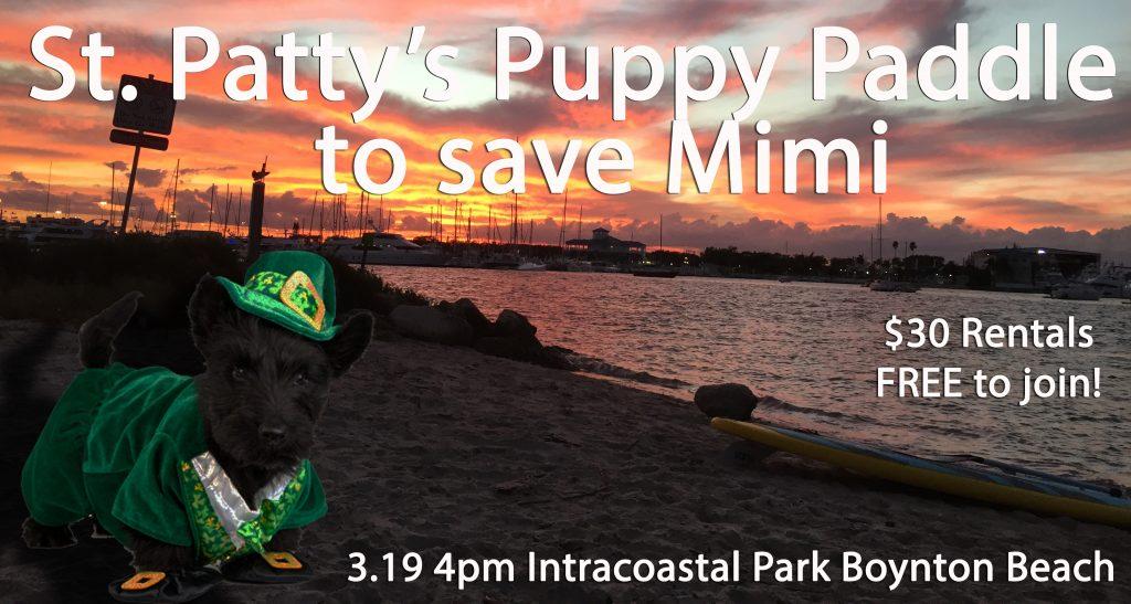 Saint Patrick's Day Paddle
