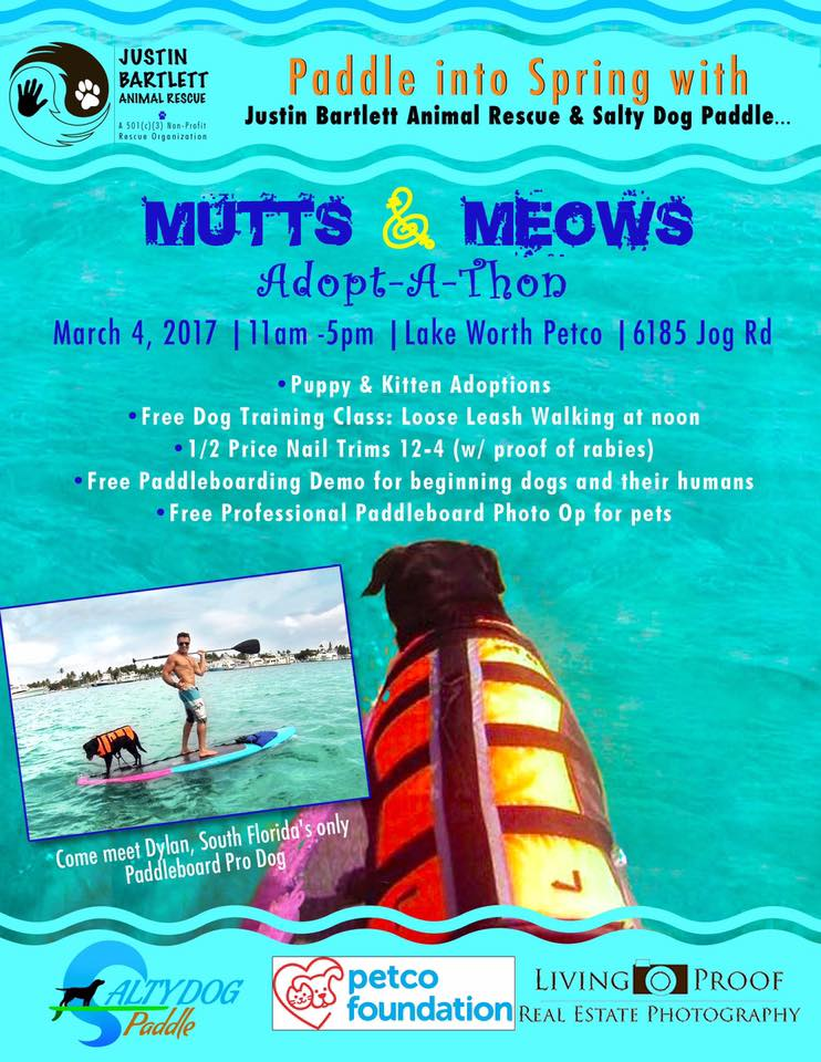 Mutts & Meows