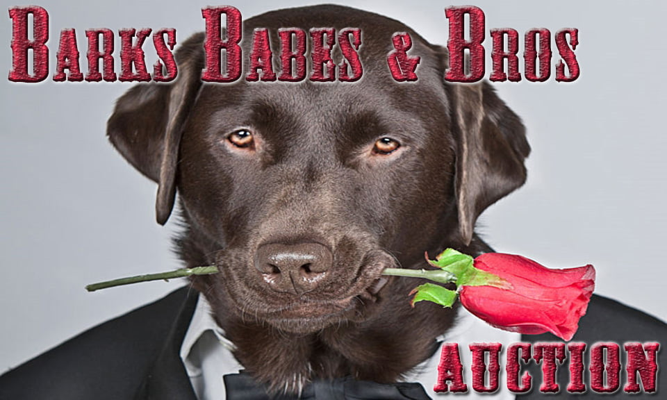 Barks Babes Bros