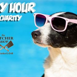 Yappy Hour West Palm Beach