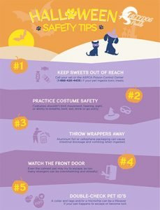 Printable Pet Safety Sheet