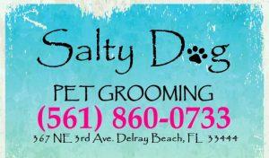 Salty Dog Saloon