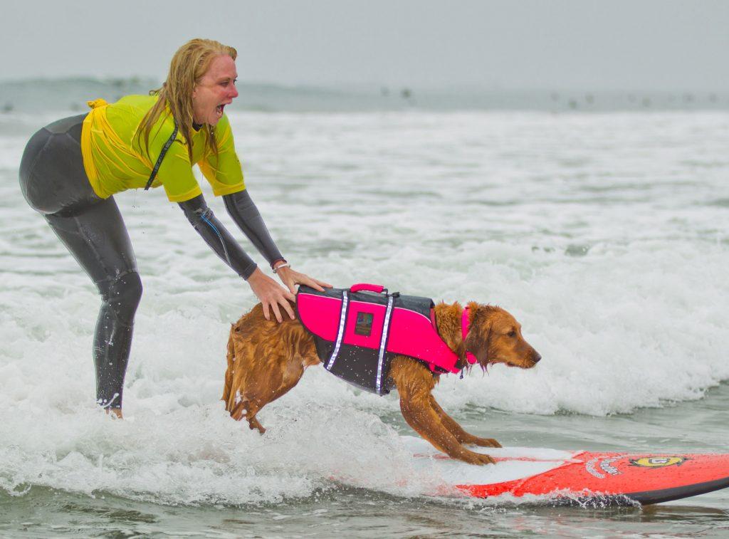 Surfing service dog