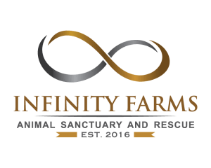 Infinity Farms
