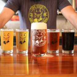 Civil Society West Palm