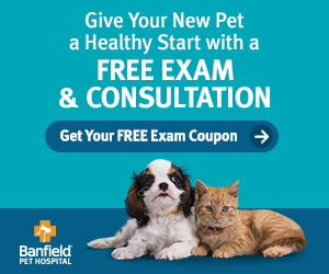 Banfield Free Exam and Consultation