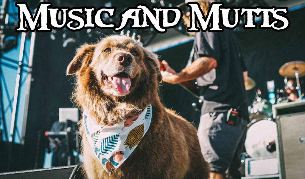 Music and Mutts