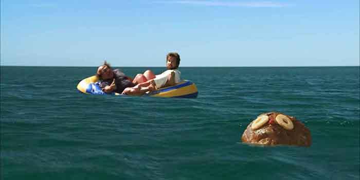 Salty Dog Paddle